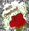 Tarjeta con una rosa